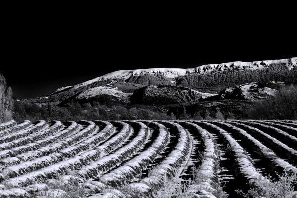 Hiver en Haute Provence de Didier Boehm - Photo Club de Martigues
