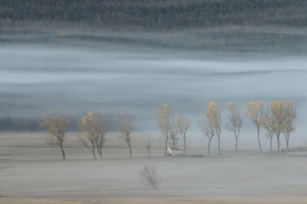 Plaine de Caille de Chantal Mathion-Gelan - Photo Club Mouansois