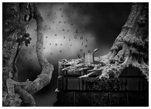 Le livre est ma nature - Catherine Monce - Phot'Azur