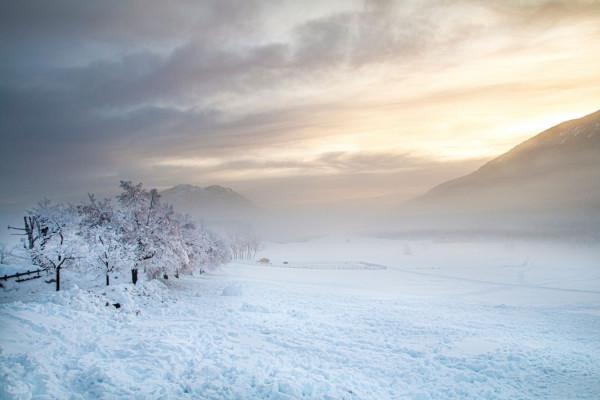 Blanche neige de Michel Pintus - Photo Club Mouansois