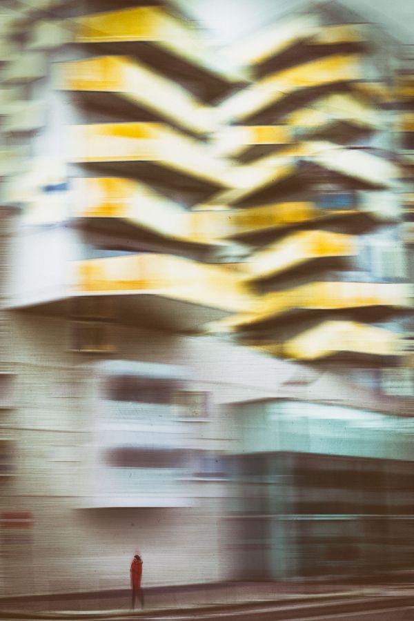Deuxième photo ex aequo - Promenade matinale de David Vincendeau - Photo Club Mouansois