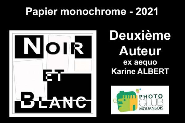 Deuxième Auteur ex aequo - Papier Monochrome