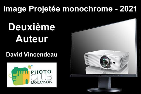 Deuxième Auteur IP Monochrome