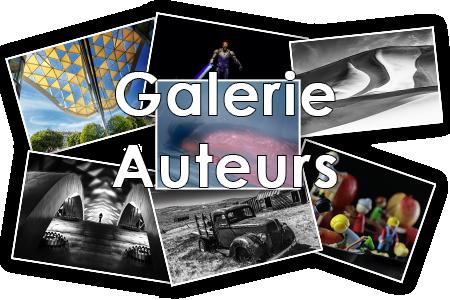 Galerie Auteurs
