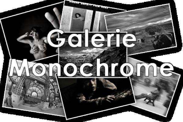 Galerie Monochrome