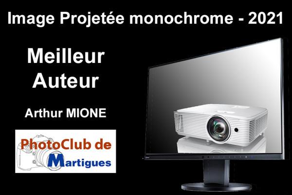 Meilleur Auteur IP Monochrome